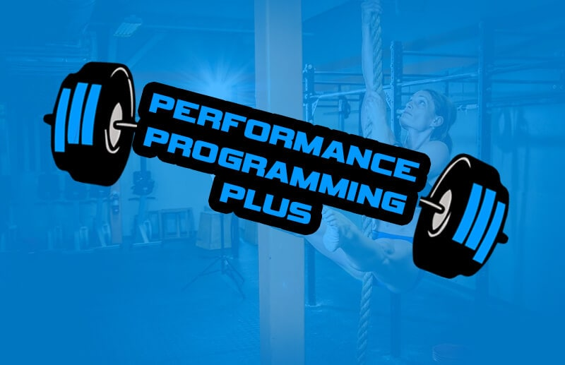 performance-programming-plus-1