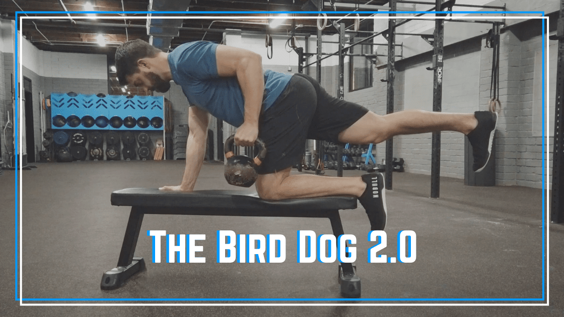 bird dog exercise