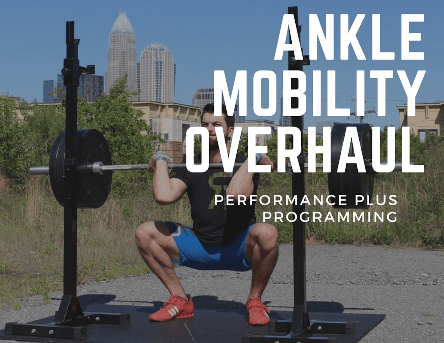 ankle mobility overhaul